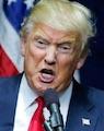 CNBC - Most CEOs Aren't Prepared for Trump's Guerrilla-Style Attackes