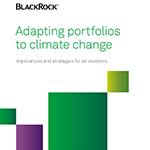 BlackRock report