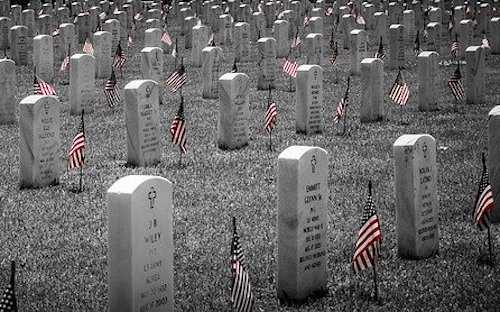Memorial Day 2020 - Flags at Arlington National Cemetery
